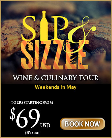 Niagara Sip and Sizzle Wine Tour Package