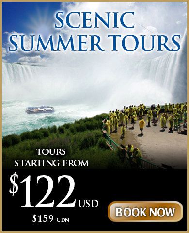 Niagara New Vintages Wine Tour Package