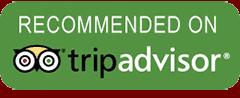 TripAdvisor Best Tour Company