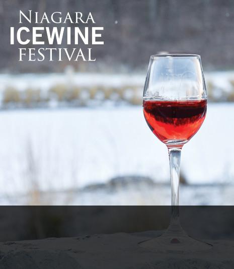 Icewine Tours